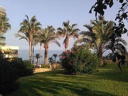 Foto - Piso en venta en calle Playa Muchavista, Playa Mucha Vista en Campello (el) - 342790565
