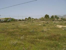 Land for sale in Crevillent - 343667366