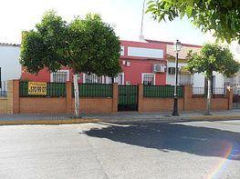 Umbrete 014.jpg - Casa en venta en Umbrete - 343326653