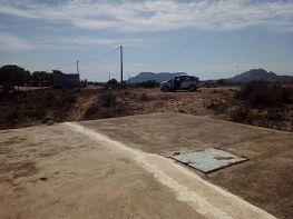 Grundstück in verkauf in San Vicente del Raspeig/Sant Vicent del Raspeig - 345939884