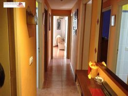 Wohnung in verkauf in calle Alcudia, Alcúdia - 349137043