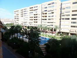 Flat for sale in calle Peru, Babel in Alicante/Alacant - 384372638