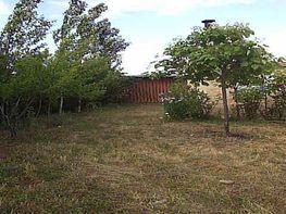 Parcel·la en lloguer calle Principal, Calvarrasa de Arriba - 369821917
