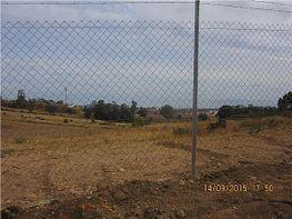 Terreno en venta en Gibraleón - 359583041