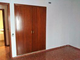 Piso en alquiler en Centro en Córdoba - 415476417