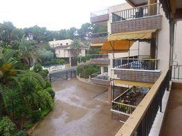 Pis en venda calle Baromeu Xamena, Palma de Mallorca - 355599141