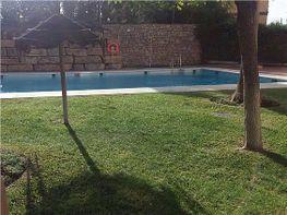 Pis en venda calle Pepa Flores Marisol, Alegría de la Huerta-Jardín de Málaga a Málaga - 379223987