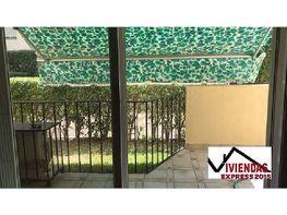 Piso en alquiler en calle Octavio Agusto, Centro en Mérida