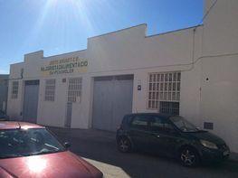 Fabrikationshalle in miete in calle De Portugal, Zona Centro in Sant Carles de la Ràpita - 363572147