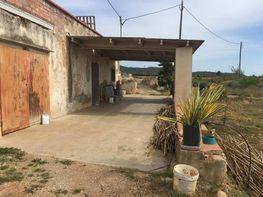 Casas rurales en alcanar y alrededores yaencontre - Casa rural alcanar ...