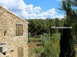 Finca rústica en venta en calle Tarragona, Caseres