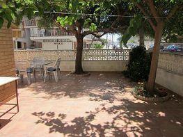 Bajo en alquiler en calle Isla de Menorca, Oliva - 395532159