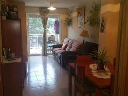 Wohnung in verkauf in calle Nova, Alcanar - 398274366