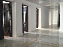 Oficina en alquiler en calle Gran Vía, Sol en Madrid - 401641457