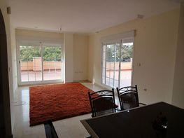 Foto 2 - Ático en alquiler en urbanización Jardines de Lunamar, Elviria en Marbella - 407579688