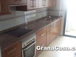 Piso en alquiler en Beiro en Granada - 407827862