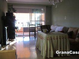 Piso en alquiler en Genil en Granada - 407829980
