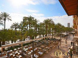Oficina en alquiler en Centro en Alicante/Alacant - 412040055