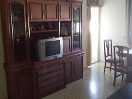 Piso en alquiler en calle La Manzanilla, Centro en Jerez de la Frontera - 414212246