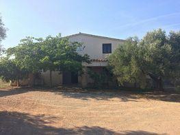 Casa rural en venta en calle Burgar, Perelló, el (Tar)