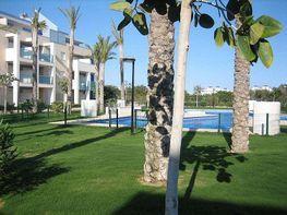Piso en alquiler en calle Cerrillos, Urb. Playa Serena en Roquetas de Mar
