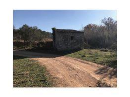 Casa rural en venta en calle Vallmoll Camino de la Riera, Vallmoll