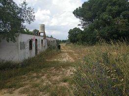 Casa rural en venta en Maçanet de la Selva