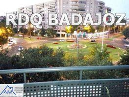 Piso en alquiler en Valdepasillas en Badajoz