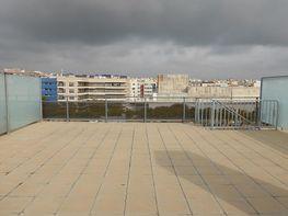 Apartamento en venta en calle Xalet del Bau, Horta de santa maria en Cambrils - 396768400