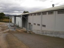 Industrial building for sale in calle Can Casas, Martorell - 205393887
