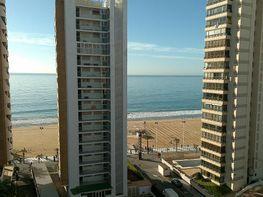 - Apartamento en venta en Levante en Benidorm - 149413410