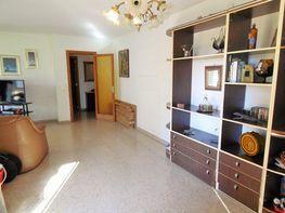 Wohnung in verkauf in calle El Fortí, Es Fortí in Palma de Mallorca - 384718812
