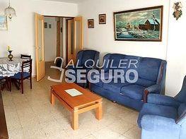 Piso en alquiler en colonia De Los Almendros, Arganda del Rey