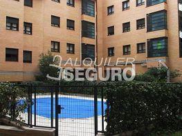 Piso en alquiler en calle Francisco Remiro, Guindalera en Madrid