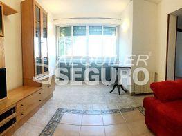 Piso en alquiler en calle Belzunegui, Abrantes en Madrid