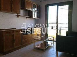 Piso en alquiler en Can Serra en Hospitalet de Llobregat, L