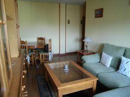 Salón - Apartamento en alquiler en Ciudad Real - 272269366