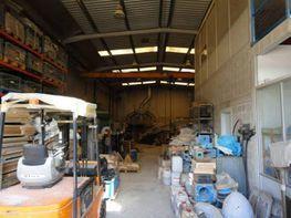 Nau industrial en venda carrer Escorxador, Sant Pere de Riudebitlles - 327061899