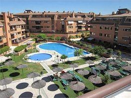 Piso en alquiler en Dehesa de Navalcarbon-Montecillo en Rozas de Madrid (Las)