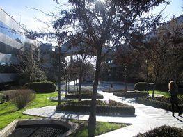 Ufficio en affitto en calle Europa, Zona Avenida de Europa en Pozuelo de Alarcón - 242379232