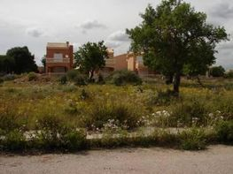 Piece of land for sale in calle Gamba, Rapita (Sa) - 23540587