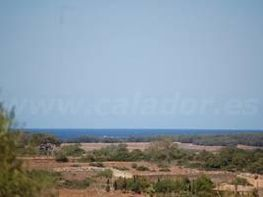 Land for sale in calle Ctra Campos, Salines (Ses) - 47739325