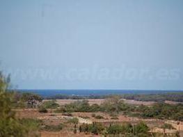 Terreno en venta en carretera Campos, Salines (Ses) - 47739325
