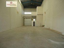 Foto - Nave industrial en alquiler en polígono Carrus, Elche/Elx - 372633327