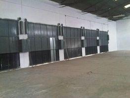 Foto - Nave industrial en alquiler en calle Llano del Espartal, Alicante/Alacant - 387526848
