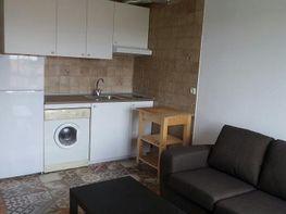 Apartamento en alquiler en calle Gregorio Marañon, Vallobin-La Florida-Las Campas en Oviedo - 351490899