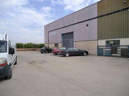 Fabrikationshalle in verkauf in calle Sèquia de Tormos, Quart de Poblet - 358862035