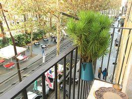 Petit appartement de location à rambla Raval, El Raval à Barcelona - 357242026
