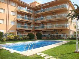 Piscina y zona ajardinada - Bajo en venta en calle Segre, Vilafortuny en Cambrils - 240374738