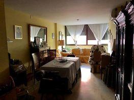 Piso en alquiler en calle Felipe Ii Bueno Monreal, El Porvenir en Sevilla